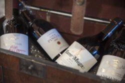 Vinos stante - Bodega Montferry 2
